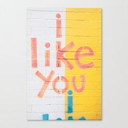 I like you! Canvas Print