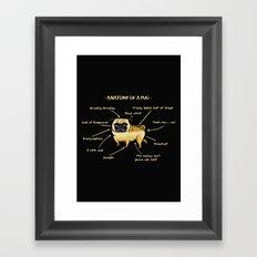 Anatomy of A Pug Framed Art Print