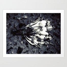 dead beatiful flower 2 Art Print