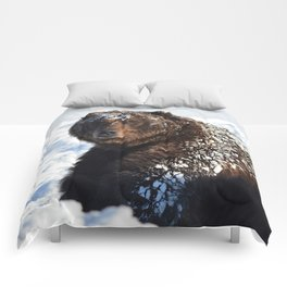 Alaskan Grizzly in Snow Comforters