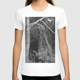 Under The Moonlight.... Into The Woods. T-shirt