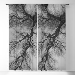 Lungs of the Earth | Nature Photography | Weeping Willow | Black and White | black-and-white | bw Blackout Curtain