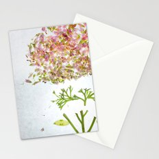 Botanical Blueprints Stationery Cards