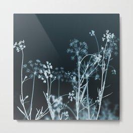 Still of the Night. Dark Floral Metal Print