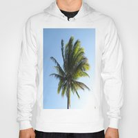 palm Hoodies featuring Palm by Percival