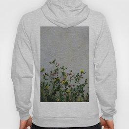 Minimal flora - yellow daisies wild flowers Hoody