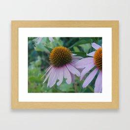 Favorite Flowers Framed Art Print