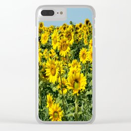 Field of Sunflowers-2 Clear iPhone Case