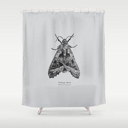 Cabbage Moth [Mamestra brassicae] Shower Curtain