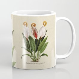 Anthurium scherzerianum old plate Coffee Mug