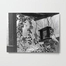 Birdfeeder Metal Print