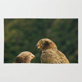 Kea Parrots in New Zealand Rug