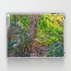 Beautiful rain forest growth Laptop & iPad Skin
