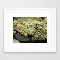 marijuana Framed Art Prints featuring Marijuana by Ryan Gillings