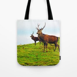 Stags on the hill Tote Bag