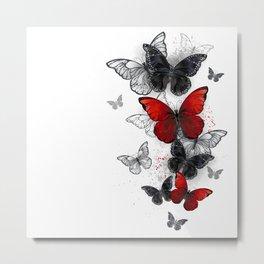Flying Black and Red Morpho Butterflies Metal Print