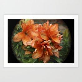 Orange You Lilly Art Print