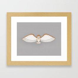 Barn Owl in Grey Framed Art Print