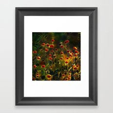 Aquatic Framed Art Print