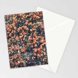 Flowers, always and always Stationery Cards