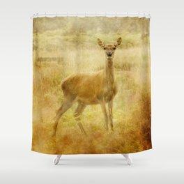 Female Red Deer Shower Curtain