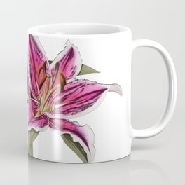 Lily true lilies herbaceous flowering bulbs prominent culture Coffee Mug