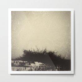Dead of Winter Metal Print