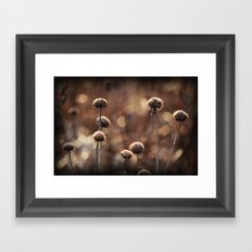 Copper Field Evening Framed Art Print