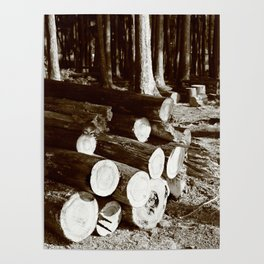 Stacked logs Poster