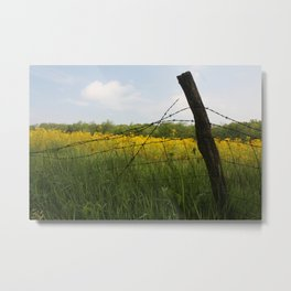 fence row Metal Print
