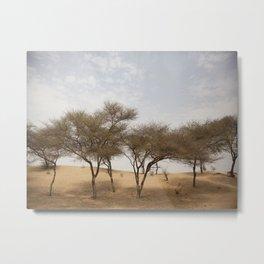 Rajasthan landscape Metal Print