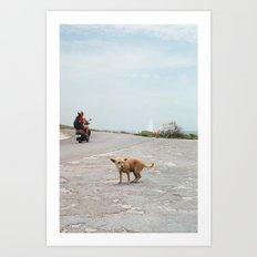 mexico 6 Art Print