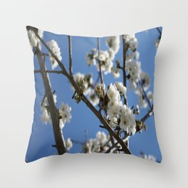 Cherry Blossom Branches Against Blue Sky Throw Pillow