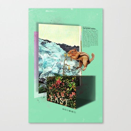 Alpine Tundra Canvas Print