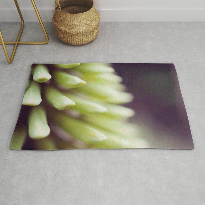 kniphofia uvaria macro photograph. Rug