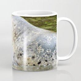 Harbor Seal Sweetness Coffee Mug