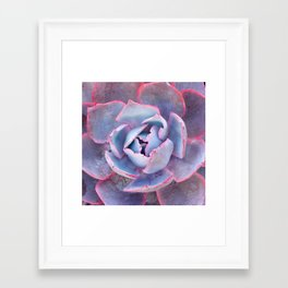 Laced with Pink Framed Art Print