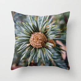 Spruce From Above Throw Pillow