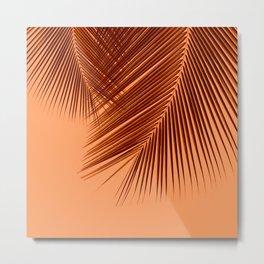 Delicate palms - sunburnt Metal Print