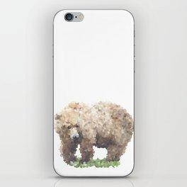 Penrose Tiling Bear iPhone Skin