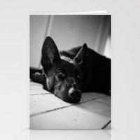 german shepherd Stationery Cards featuring Dog German Shepherd  by Jo Bekah Photography