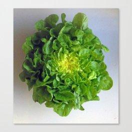 Pretty Lettuce Canvas Print