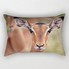 Impala in South Africa - wildlife Rectangular Pillow