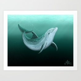 """Riversoul"" by Amber Marine ~ Indian River Lagoon bottlenose dolphin art, (Copyright 2014) Art Print"