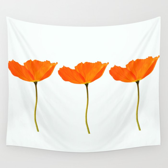 Three orange poppy flowers white background decor society6 buyart three orange poppy flowers white background decor society6 buyart wall tapestry mightylinksfo