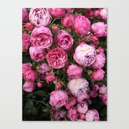 Victorian Roses Canvas Print
