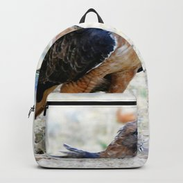 Hungry Red Teiled Hawk Backpack