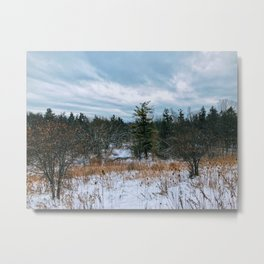 Vast field and forest Metal Print