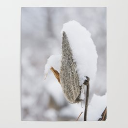Snow Covered Pod Poster