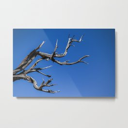 Dead Tree in Grand Canyon Metal Print